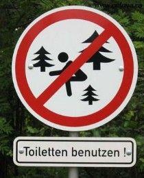 осторожно колючие деревья!
